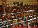 Domingo de Carnaval 03.02.08-14