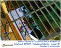 Coquetel de lançamento Gata da Academia 03 - 30.04.17-12
