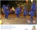 Carnaval Cultural 15.02.15-24