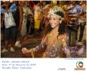 Carnaval Cultural 17.02.15-14