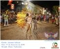 Carnaval Cultural 17.02.15-3